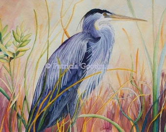 Blue Heron in the Grasses