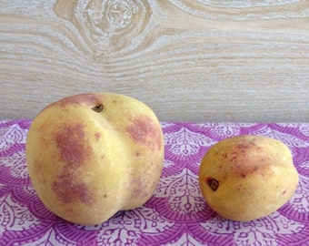 PAIR of Antique Stone/Marble Fruit - Peach + Apricot | Made in ITALY