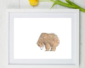 Bear, Grizzly bear, Bear art, print, watercolour bear, bear watercolour, bear painting, Scruffy bear, grizzly bear painting, nursery art