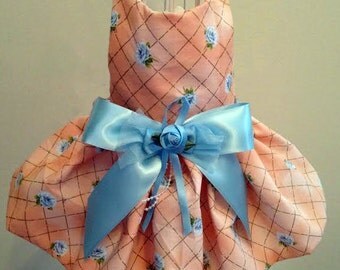 Peach and Baby Blue Spring & Summer Dog Dress