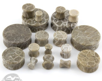 Fossilized Coral Plugs - Double Flare (2G - 32mm) Sold In Pairs - New!