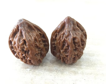 Collection Walnuts