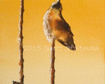 Hummingbird Watercolor Painting Print