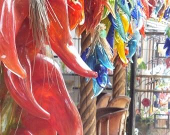 Santa Fe Blown Glass Chili's Photo