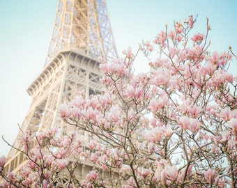Paris Photography, Magnolia Blossoms at the Eiffel Tower, Spring in Paris, Travel Fine Art Photograph, Large Wall Art, Gallery Wall