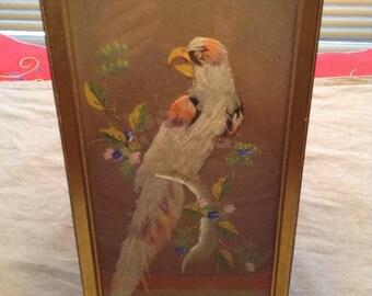Vintage Wall Bird Art In Oil & Genuine Bird Feathers