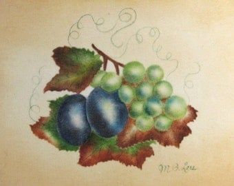 Theorem on Velvet Fruit Still Life Painting