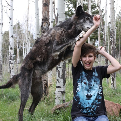 whitew3r3wolf