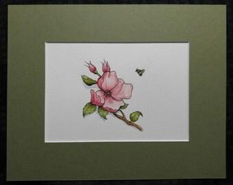 Blossom Watercolor