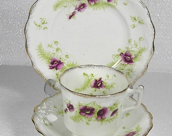 Art Deco J H Cope Wellington China 1906 Floral  Pattern Trio Cup Saucer And Sideplate