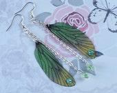 Beautiful Fairy Wing Earrings (4)