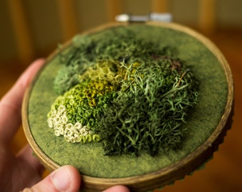 Moss Embroidery