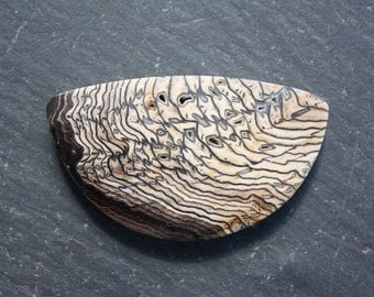 Hell's Canyon, Petrified Wood, Designer, Cabochon