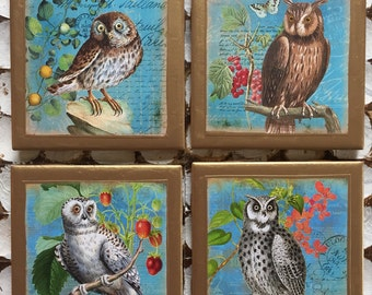 COASTERS! Owl coasters with gold trim