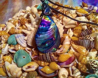 Aura Oil Shell of Knowledge Necklace