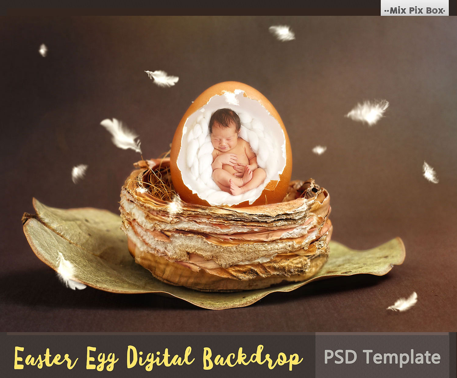 how to make backdrop in photoshop