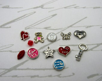 BIRTH MOTHER Gift To Baby Locket Necklace  For Child To Remember Mother With 12 Floating Charms Lost A Child To Miscarriage Adoption DFCS