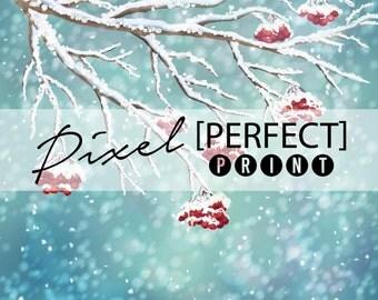 "3ft x 3ft ""Snow Tree Branch"" Vinyl Backdrop / Winter Backdrops / Christmas Backdrop / Christmas Background / Holiday Backdrop (PP532)"