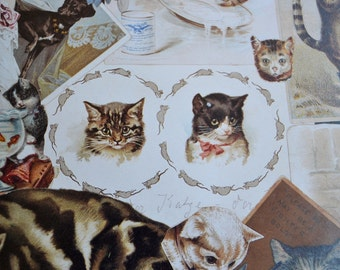 Vintage Wrapping Paper - Victorian Cats Collage - 20 x 27