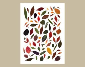 Poster Autumn