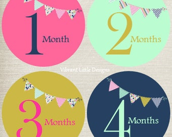 Baby Month Stickers Girl, Milestone Stickers, Month Stickers, Monthly Baby Stickers, Baby Stickers, Bunting #129