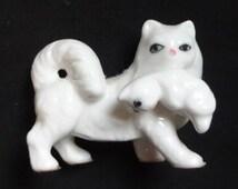 Blue Eyed White Cat Carrying Her Kitten