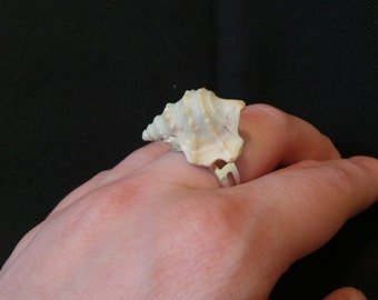 Vintage Miniature Lace Murex Sea Shell Adjustable Silver Ring