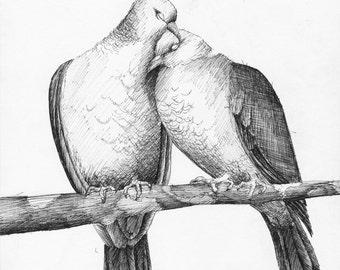 """Love Doves - 8"""" x 10"""" Print"""