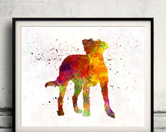 Kromfohrlander 01 in watercolor - Fine Art Print Poster Decor Home Watercolor Illustration Dog - SKU 2015