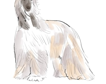 afghan wolfhound, digital dog print, ink and watercolor wash