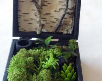 Jardin de poche, pocket garden, boîte jardin, garden box, coffret bois, wooden box, design vegetal, green