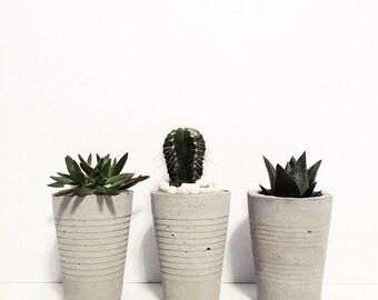 Concrete Cup Planter - Plain