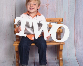 "Two Sign Photo Prop - 2nd Birthday Sign ""TWO"" in Custom Colors, Second Birthday Photo Prop Baby Birthday Party Decor (Item - TWO108)"