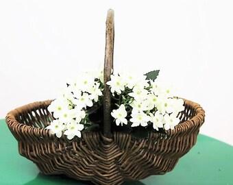 Vintage Reed Trug(small)/Reed Basket/Garden Trug/Garden Basket/ Vegetable Basket/Fruit Basket/Gardening