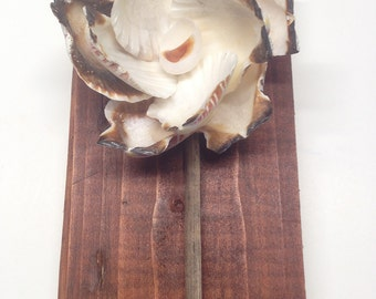 Seashell Flower Rose Reclaimed Pallete Wood