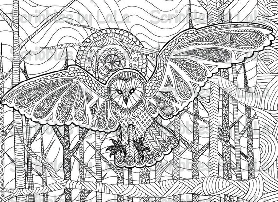 Printable Adult Coloring Page Owl High Quality PDF