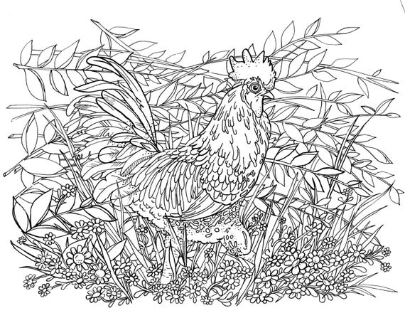 Coloring Pages For Adults Rooster : Adult coloring page rooster in the flowers by jennrimbeyart