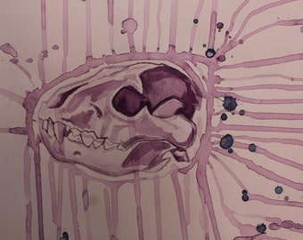 Hyena Skull Watercolor