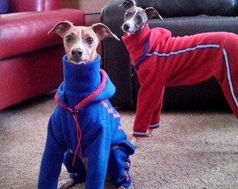 Running Suit for Italian Greyhound