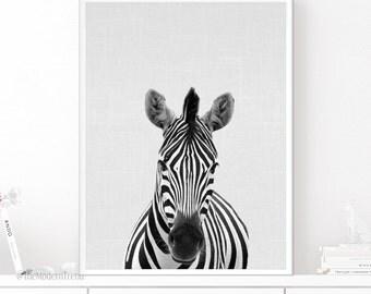 Zebra Print, Zebra Wall Art, Nursery Wall Decor, Nursery Animal Print, Wall Art, Digital Print, Grey and White, Peekaboo, Peekaboo Animal