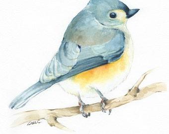 "Watercolor Print  ""Tufted Titmouse"" Bird Art, Bird Print, Wall Decor, Bird Nursery print"