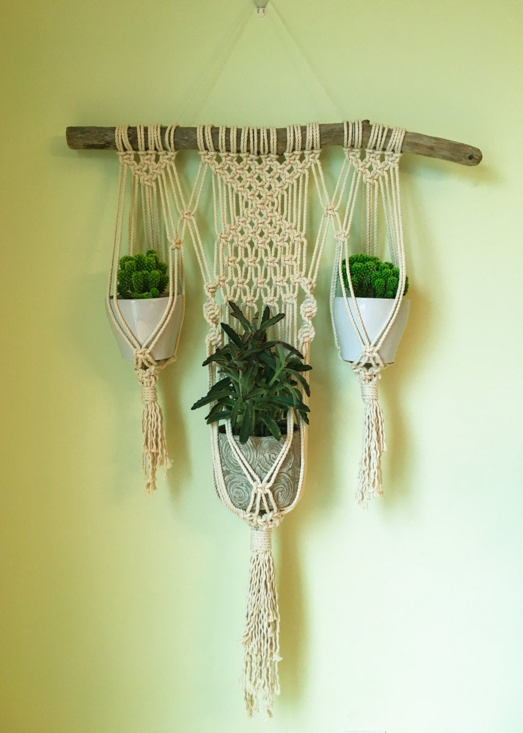 macrame wall plant hanger. Black Bedroom Furniture Sets. Home Design Ideas