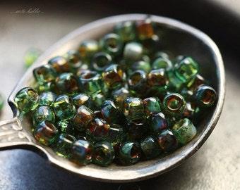 sale .. AQUA SEED BEAD .. Glossy Picasso Czech Glass Seed Beads Size 8 (4637g)