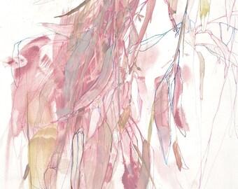 Eucalyptus in Pink