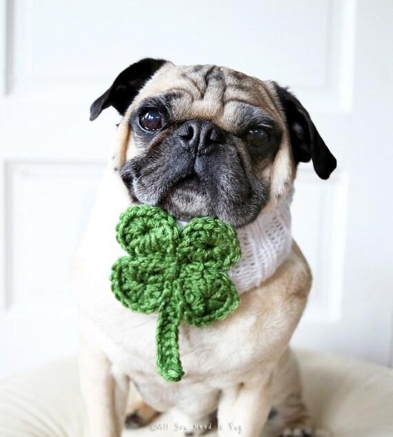 Lucky Clover Knit Dog Collar - Dog Scarf - Dog Neck Warmer - St. Patrick's Day Dog Accessories - Irish Dog Clothing