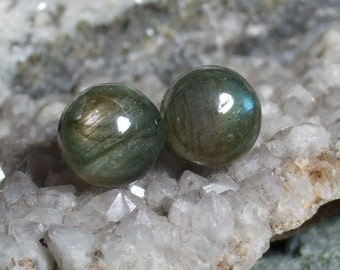 Labradorescence Exists 10mm Round Cabochon Labradorite Stud Earrings Earings Titanium Post and Clutch Flash Sparkly Magic Hypo Allergenic