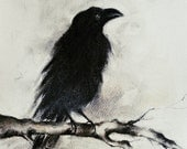 Original Charcoal Drawing Crow on a Branch Blackbird Raven Halloween Gothic Dark Art 8x12""