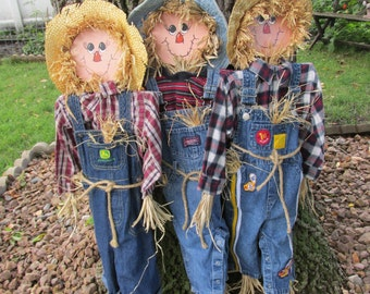 Scarecrow  Autumn Indoor or Outdoor Decor Stake In Pot or Ground Choose One Ready to Ship