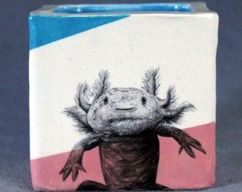Hand Painted Axolotl Portait Pencil Box