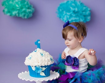 Smash Cake Dress for Baby Girls, Baby Girl Tutu Outfit for Cakesmash, Blue and Purple 1st Birthday Dress